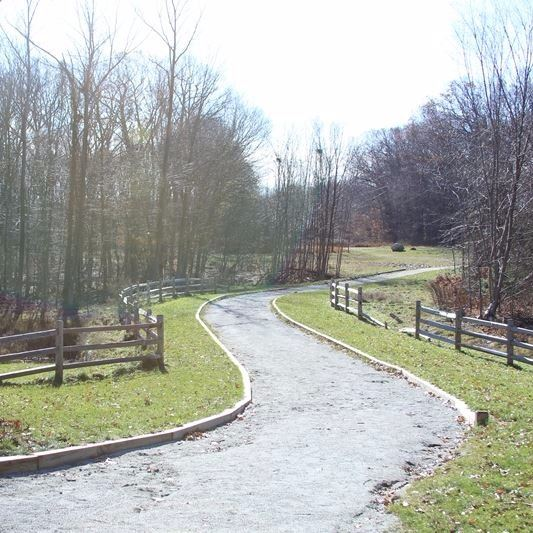 image of Green Bike Rack on the Trail